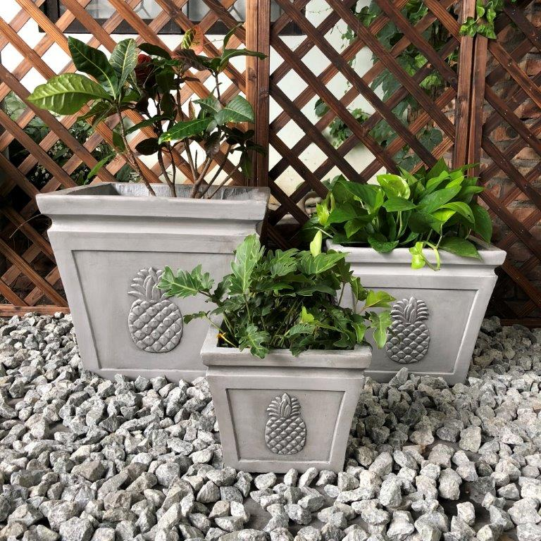 DurX-litecrete Lightweight Concrete Square pineapple Light Grey Planter - Set of 3