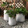 DurX-litecrete Lightweight Concrete Cylinder Light Grey Planter – Set of 3 2