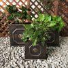 DurX-litecrete Lightweight Concrete Lion Head Square Bronze Planter – Set of 3 2