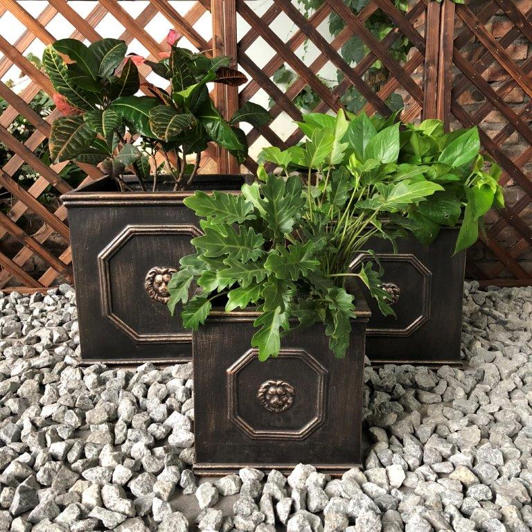 DurX-litecrete Lightweight Concrete Lion Head Square Bronze Planter