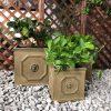 DurX-litecrete Lightweight Concrete Lion Head Square Brownstone Planter – Set of 3 3
